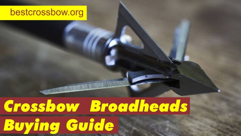 Best Crossbow Broadheads 2021 Buying guide