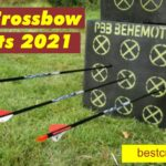 Best Crossbow Target 2021| Review & Buying Guide